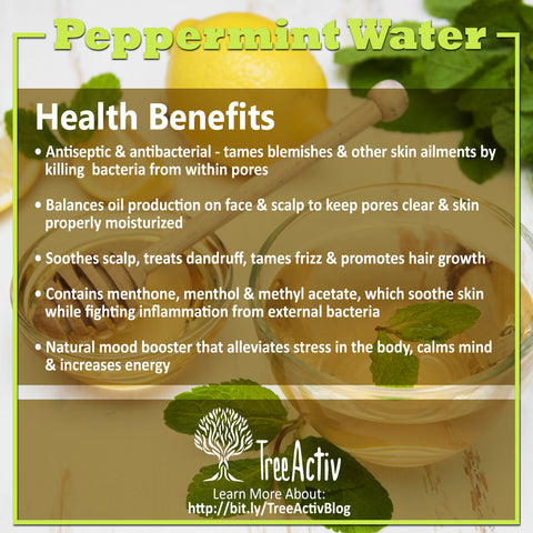 TreeActiv Peppermint Water Health Benefits
