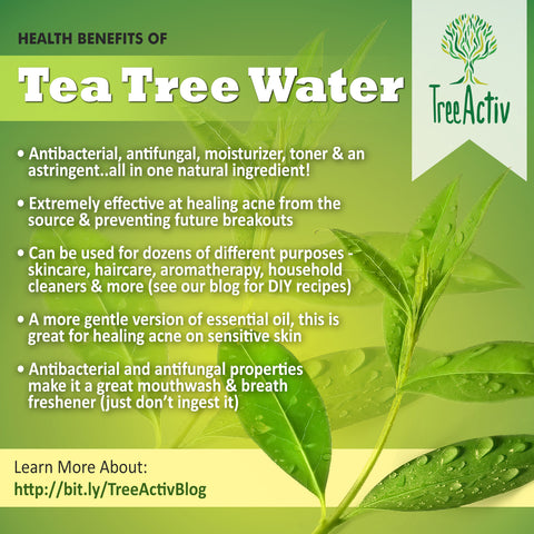 TreeActiv Tea Tree Water Health Benefits