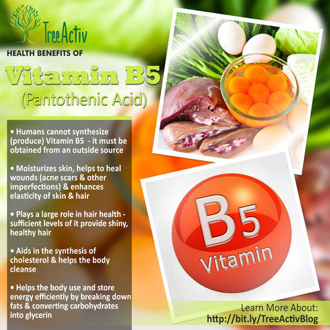 TreeActiv Vitamin B5 Health Benefits