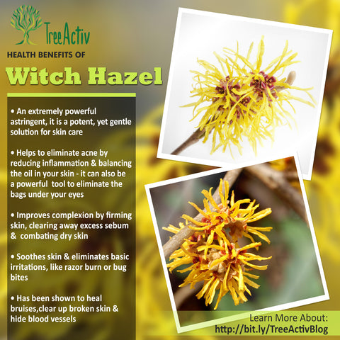 TreeActiv Witch Hazel Health Benefits