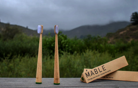 Mable toothbrush, green brush, eco-friendly, green homes