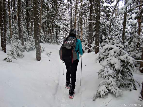 Hiking to Mount Isolation in Winter