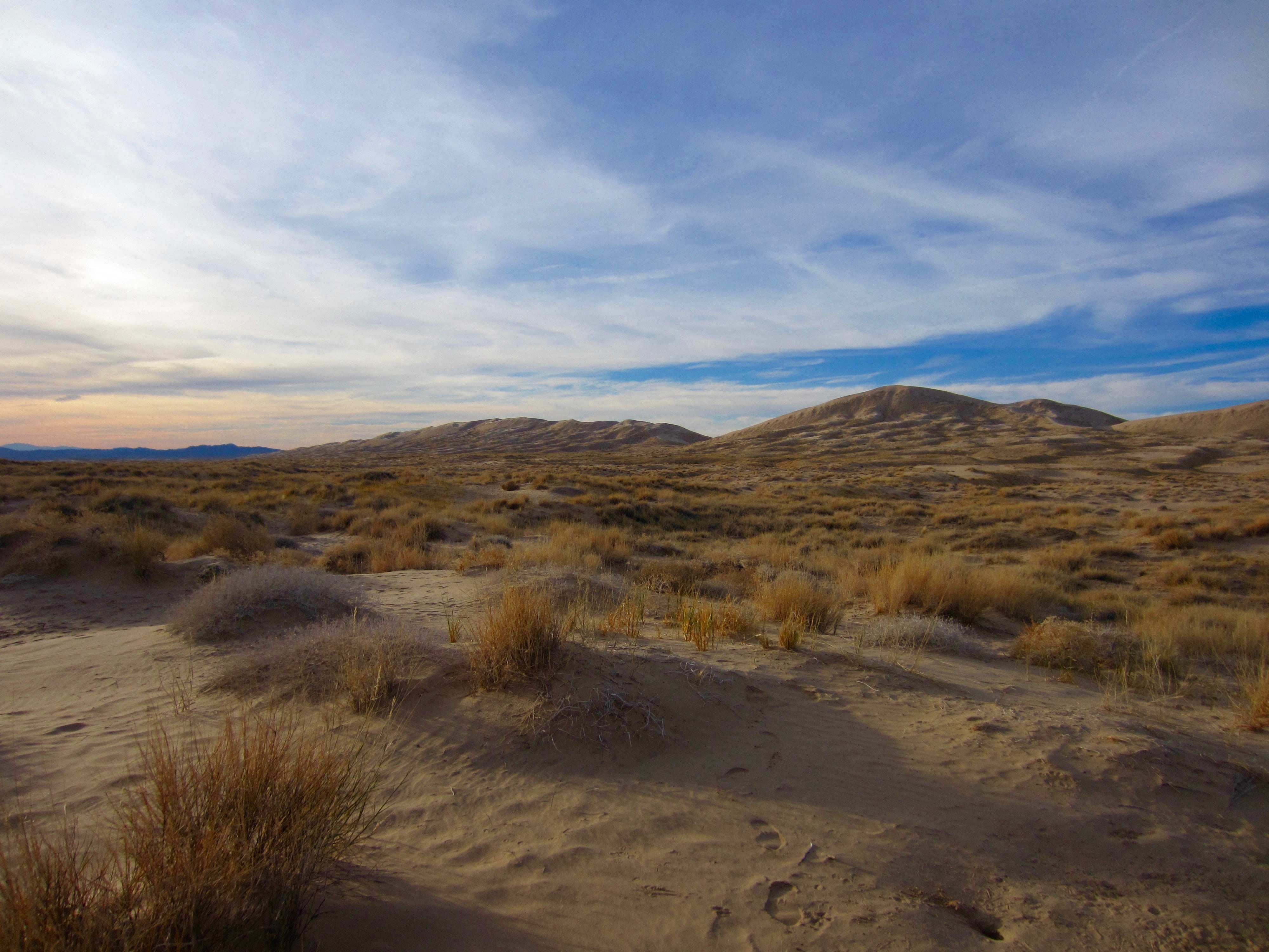 Photo of Mojave Desert