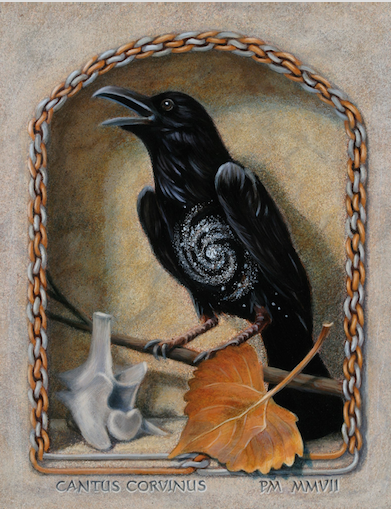 Crow or raven art with skull