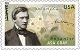 Asa Gray US Postage Stamp