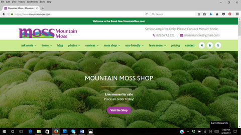 Mountain Moss Tagged Moss For Terrariums Mountainmoss