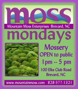 MossMondays_WEB