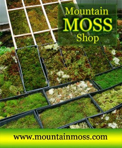 Mountain Moss Shop - Green Roof - Moss Trays for Sale