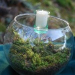 Terrarium Big Bowl Tall Candle-6