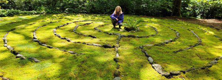 Mountain Moss Experts In Moss Landscaping Mountainmoss