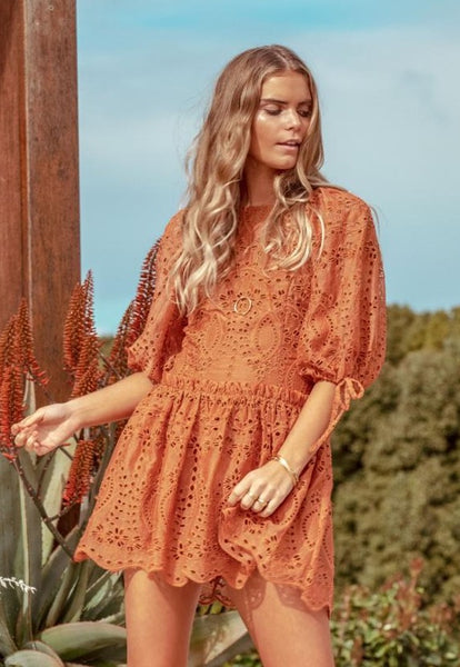 Splendour Embroidery Mini Dress