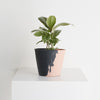Even-Steven Eco Resin Pots-Peach&Midnight, Plant Pot, CAPRA DESIGNS, USFIN ATELIER- USFIN ATELIER | SYDNEY ONLINE SHOPPING FREE SHIPPING
