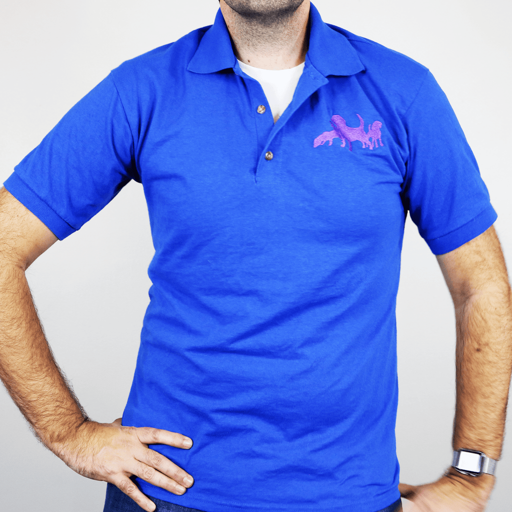 colorful rugby shirts and polos for men