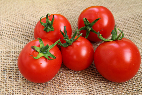 Chitose Cherry Tomatoes - (Retail Only)