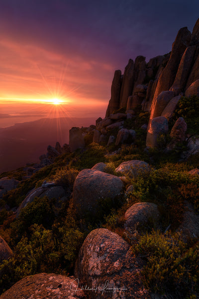 Photograph titled Morning-Light by Hillary Younger