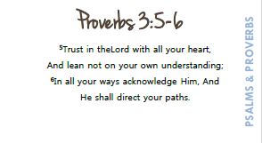 Simply Scripture Promises of Psalms & Proverbs - Memory Cards - (PRINTED/LAMINATED)