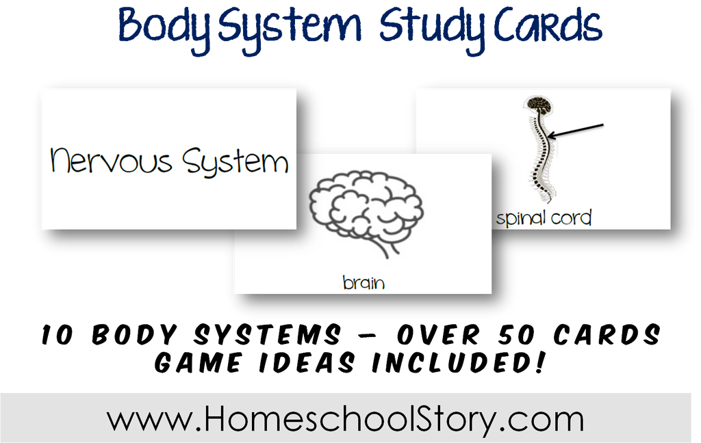 Science - Human Body Study Cards (INSTANT DOWNLOAD)