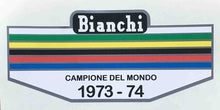 Bianchi Seat Tube bands 1973-74-H Lloyd Cycles