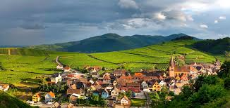 Discovering French Vineyards, Alsace