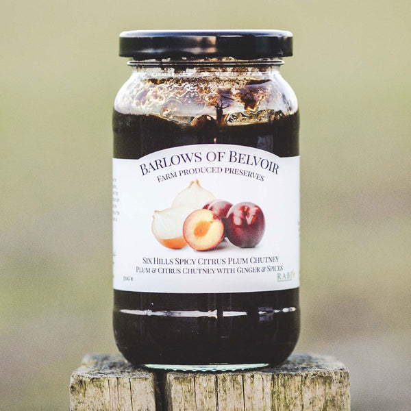 Six Hills Spicy Citrus | Plum & Citrus Chutney with Ginger & Spices