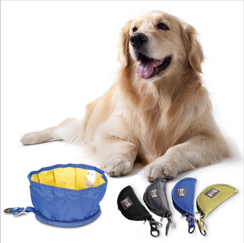Collapsible Dog Bowl 55% Off *Free* Shipping Offer - Atlantic Trading Stop