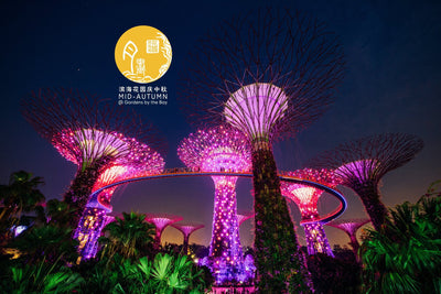 Places to go this Weekend - Mid- Autumn @ Gardens By The Bay