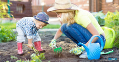 6 Easy Plants to Grow with Kids in Singapore