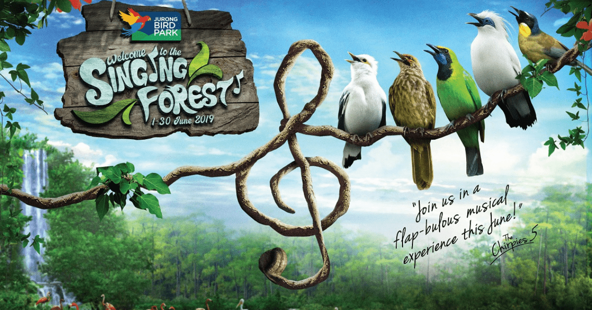 "Discover And Experience The ""Singing Forest"" @Jurong Bird Park"