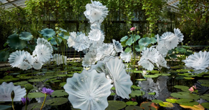 Breathtaking Glass Sculptures by Artist Dale Chihuly Set to Bloom at Gardens by the Bay