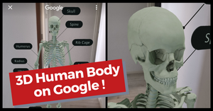 BioDigital Human | 3D Anatomy Online Visualiser on Google