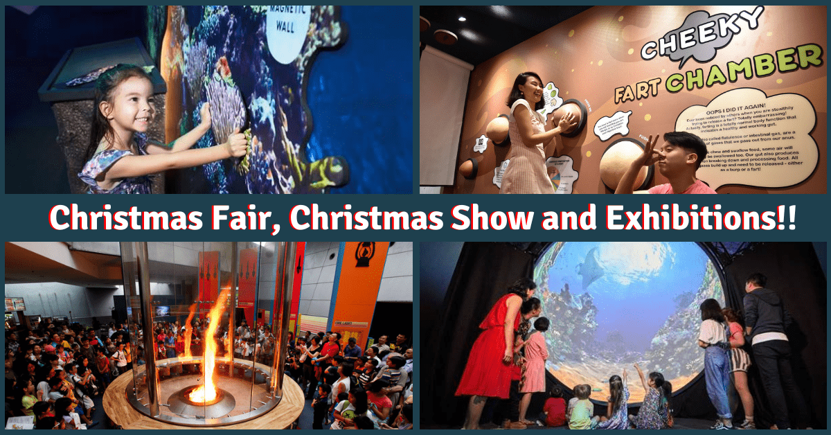 What's Happening at the Science Centre this December | A Christmas Fair, a Christmas Show, an Animal Planet Exhibition and an Exhibition about POO!