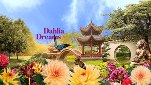 Things to do this Weekend: Step into the Land of Dahlia Dreams @ Gardens by the Bay with Your LOs!