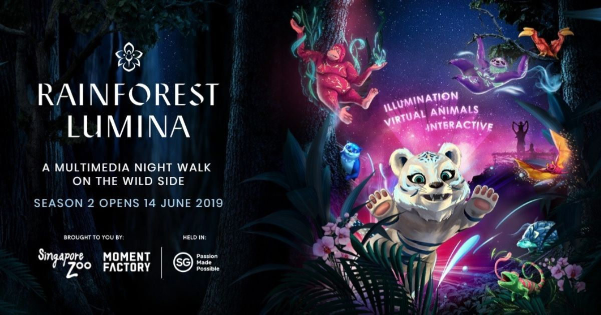 A Multisensory Walk on the Wild Side – Rainforest Lumina is back for its 2nd Run | Singapore Zoo