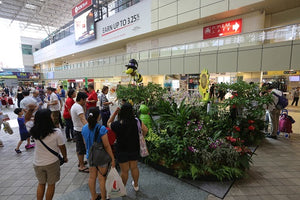 Things to do this Weekend: Visit Singapore Garden Festival Roadshow with Your Little Ones!