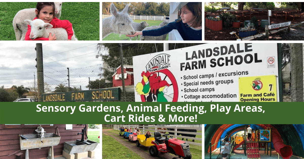Landsdale Farm | A Unique Educational Farm Experience In The Northern Suburbs Of Perth!