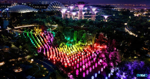 #futuretogether at Gardens by the Bay | Featuring Interactive Light Art Installations