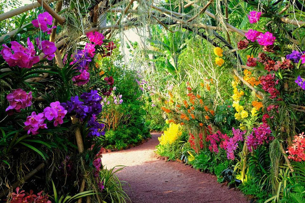 Brighten Up Your Day with Flora and Foliage at SGF Hort Show!