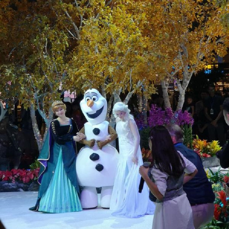 Free Things to do 2019 - A Frozen Wonderland in Changi