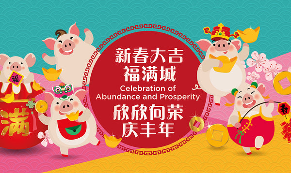 Celebration of Abundance & Prosperity at Chinatown