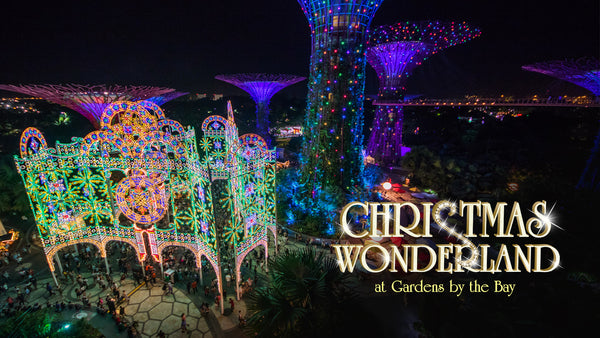 Step into Christmas Wonderland with Your Little Ones at Gardens by the Bay!