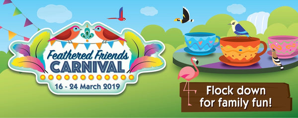 Make Merry with your Little Ones at Jurong Bird Park's Feathered Friends Carnival!