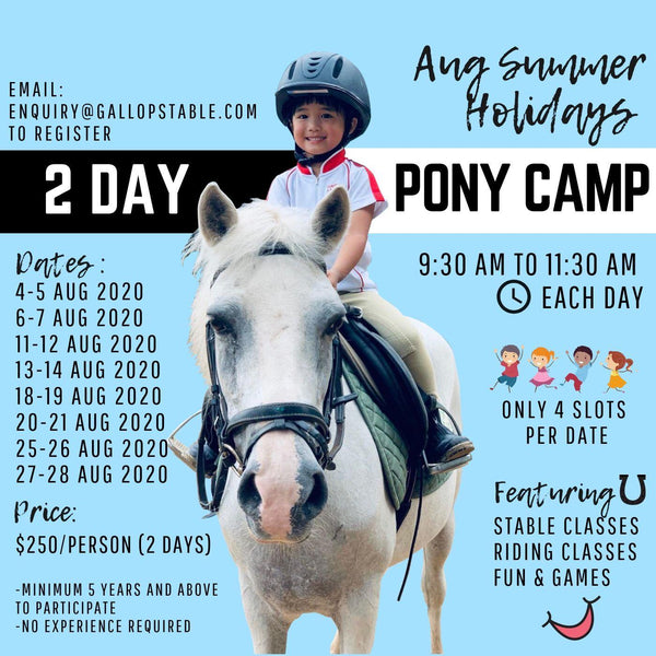 Gallop Stable 2 Day Pony Camp