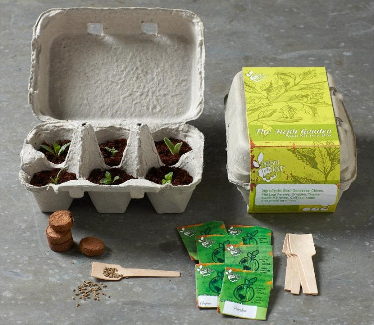 Last Minute Gift Ideas to Impress Your Kids With this Children's Day - Gardening