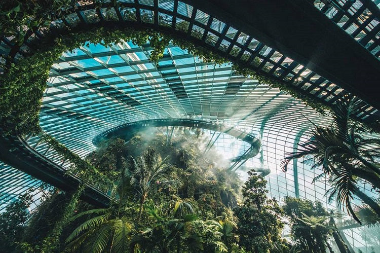 Best Value Annual Family Memberships to Own in 2020 - Gardens by the Bay