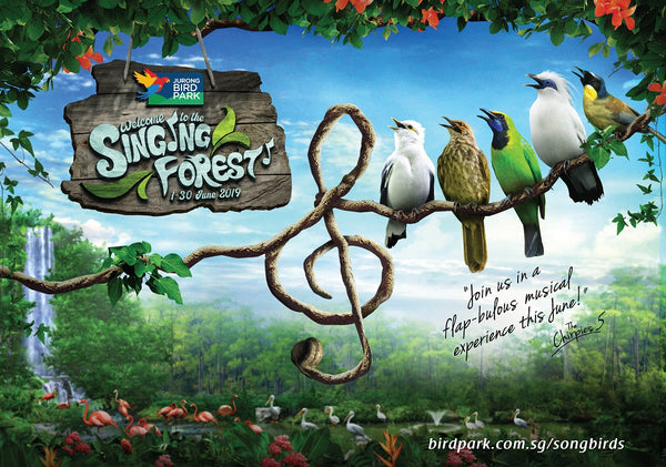 The Singing Forest at Jurong Bird Park