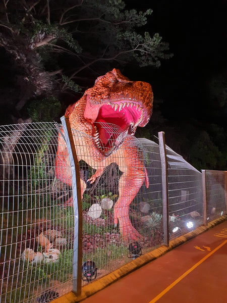 Changi Airport Connector is home to the Changi Jurassic Mile