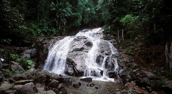 5 Towns and Districts to Visit with Your Kids in Johor  - Kota Tinggi Waterfall