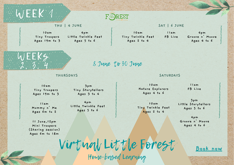 Little Forest Virtual Classes