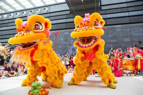 Join in the Lunar New Year Celebrations at NMS!