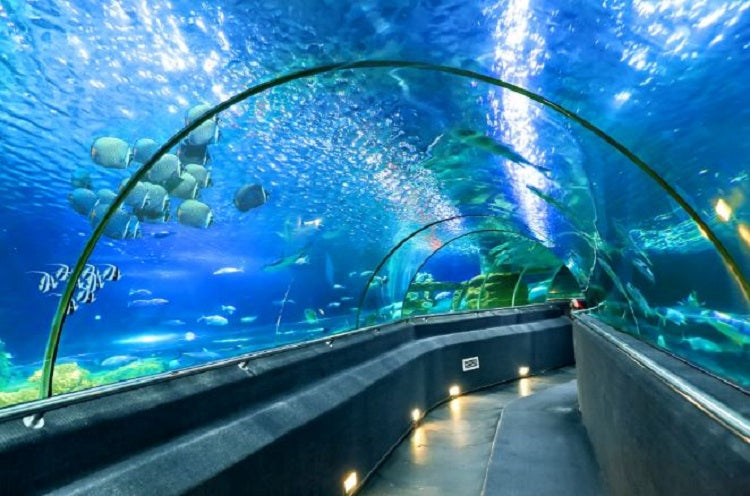 6 Short Family-Friendly Getaways from Singapore - Phu Quoc Vinpeark Aquarium